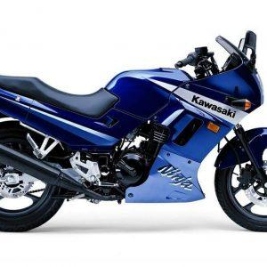 1989-2007 EX-250