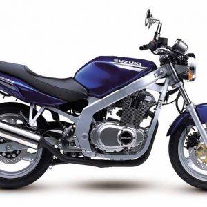 1989-2003 GS-500